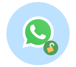 Unblock WhatsApp with a VPN.