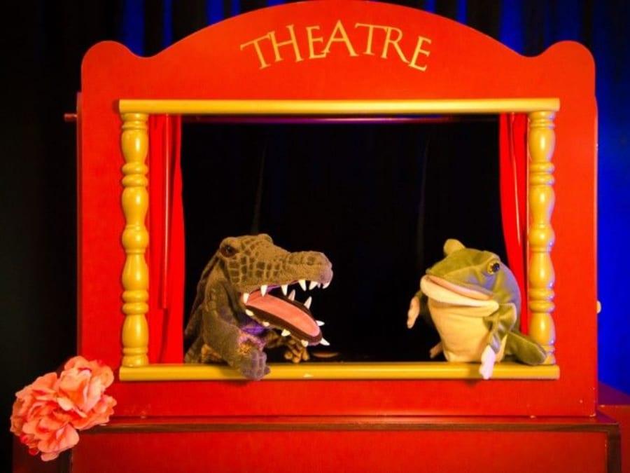 Anniversaire Spectacle de Marionnettes 2-8 ans à domicile (37)