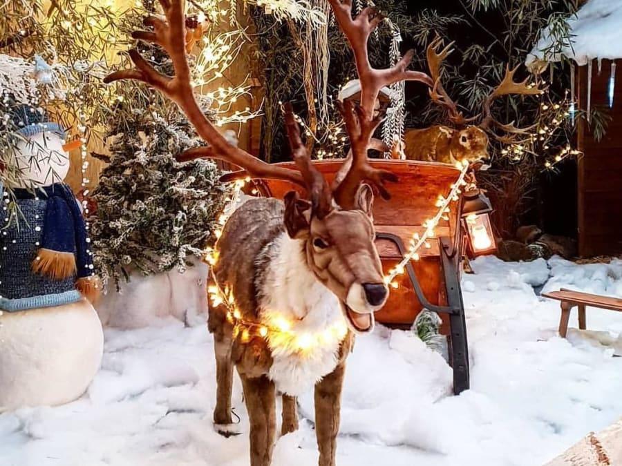 Ateliers Noël & Merveilles à la Ferme de Gally de Saint-Cyr 78