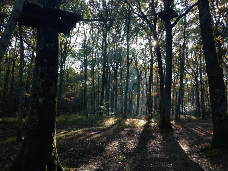 Anniversaire Accrobranche 3-14 ans à Avallon  (Yonne - 89)
