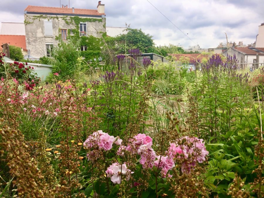 Initiation au jardinage naturel et à la permaculture à Paris