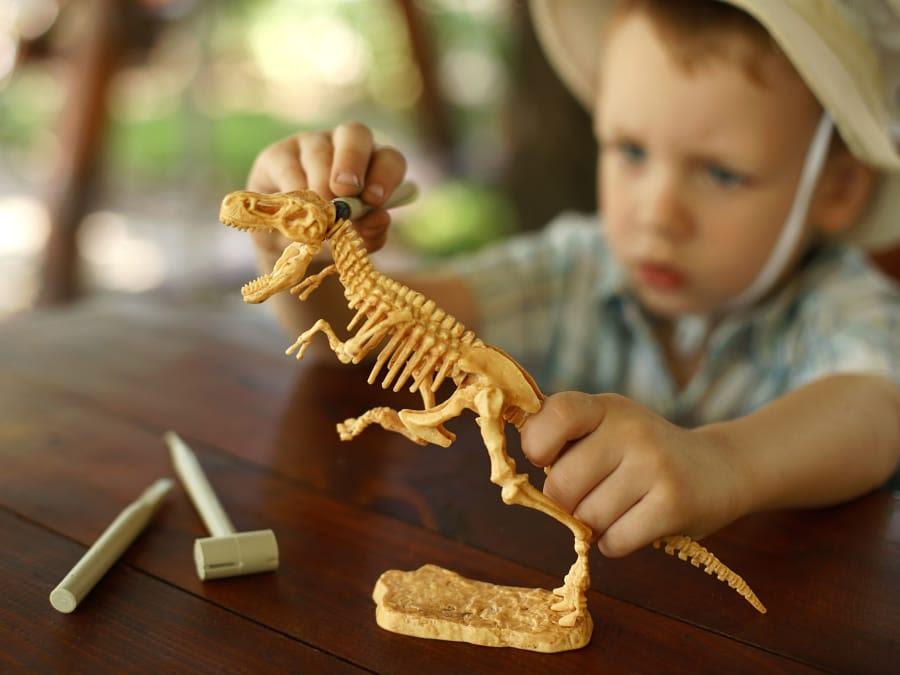 Anniversaire Dinosaure 4-9 à domicile (IDF)