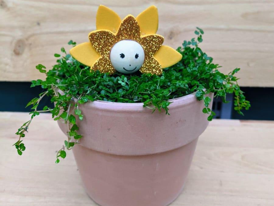 Atelier Enfant Création de lutin fleur Truffaut Ville-du-Bois