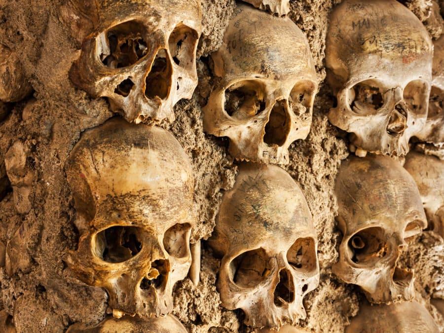 Visite guidée des catacombes de Paris avec entrée prioritaire