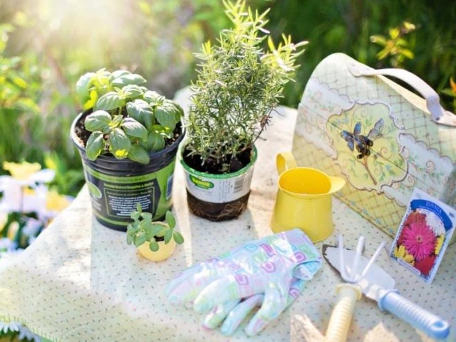 Anniversaire Jardiniers en herbe 3-12 ans à Paris 15ème Sud