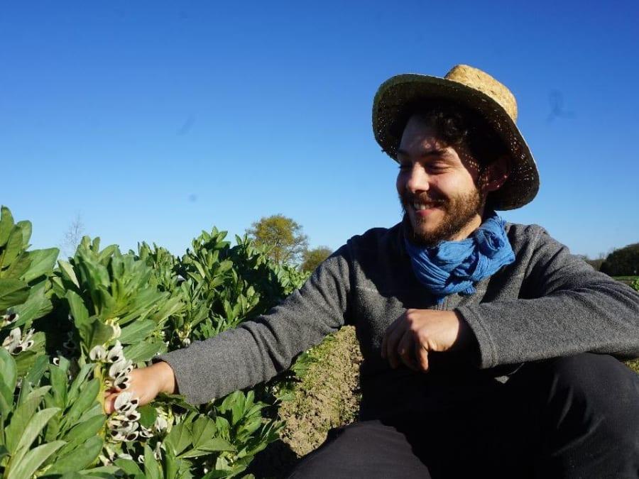 Découverte des plantes sauvages comestibles à la Cueillette