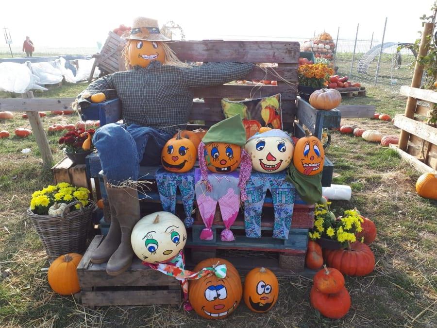 Atelier citrouille d'Halloween à la cueillette de Peltre (57)