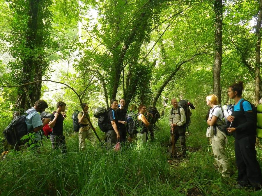 Stage de survie en milieu forestier en Dordogne