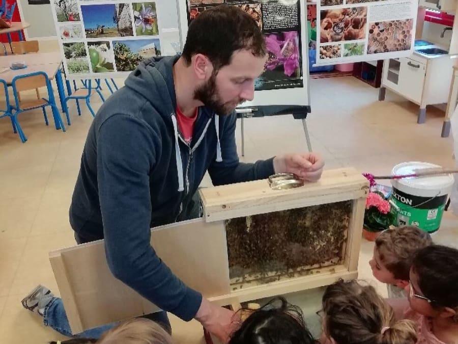 Atelier à la découverte des abeilles