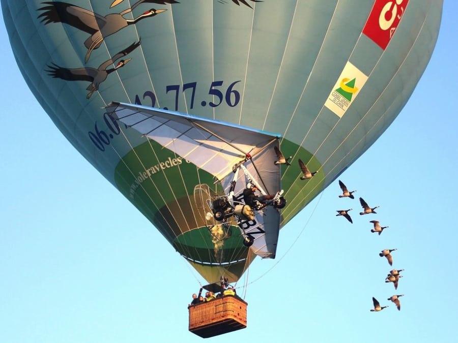 Vol avec les oiseaux en montgolfière, au pied du volcan Cantal