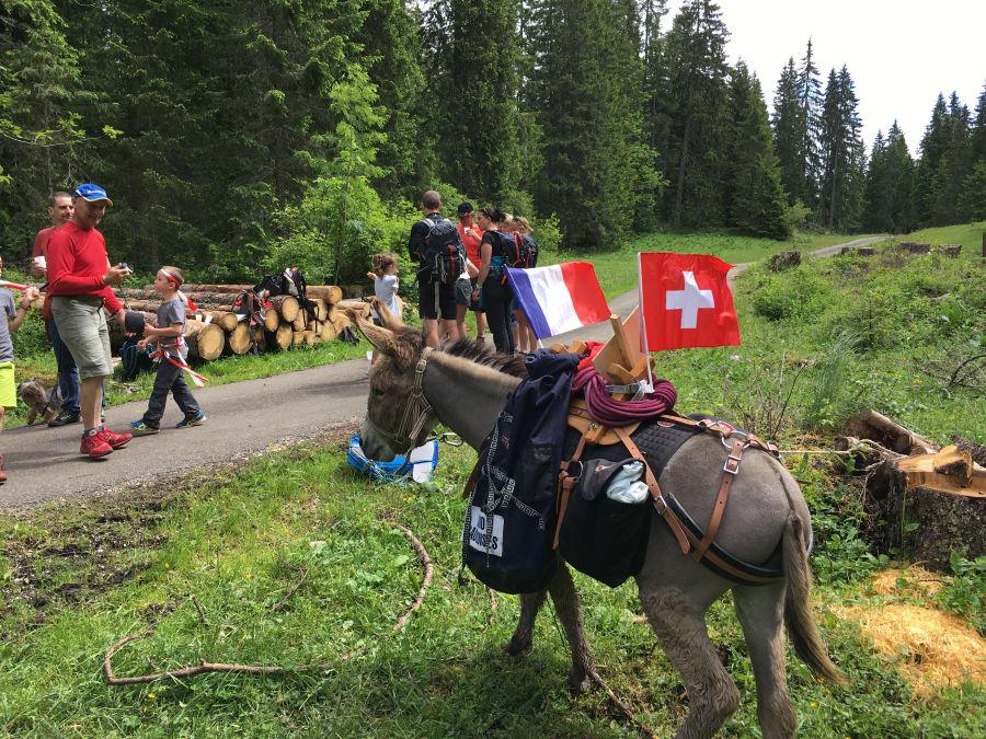 Randonnée avec âne de bat dans le Haut-Jura (Gex)