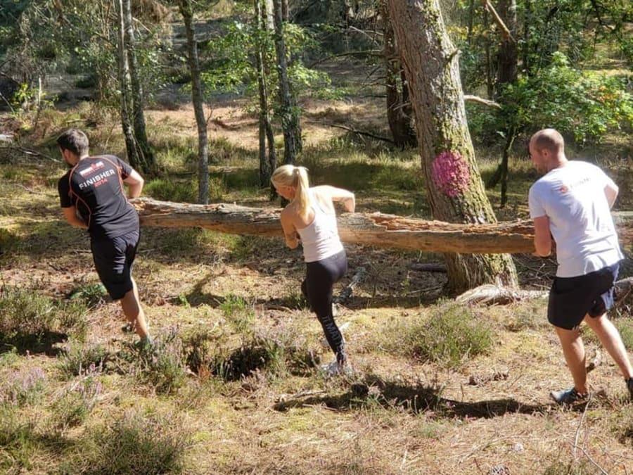 Team building Construction d'abris Forêt de Rambouillet