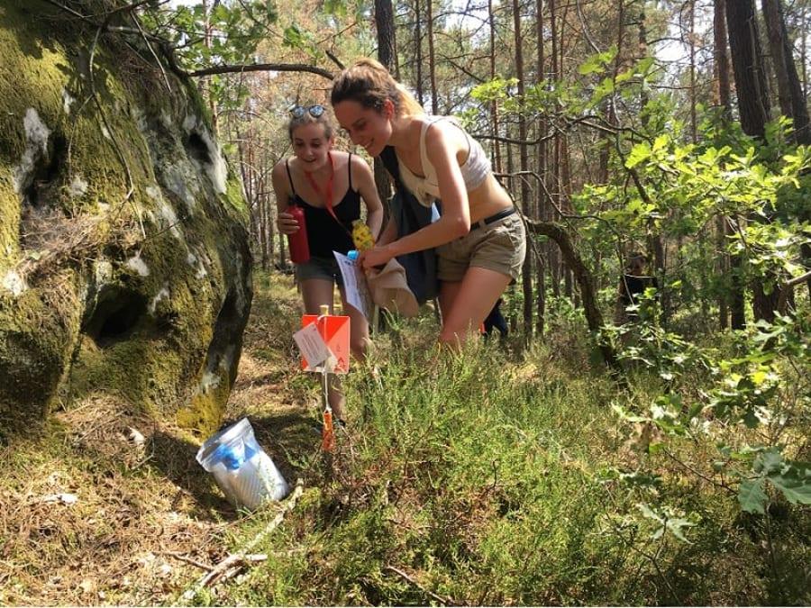 Team Building Course d'Orientation Climat Forêt de Fontainebleau