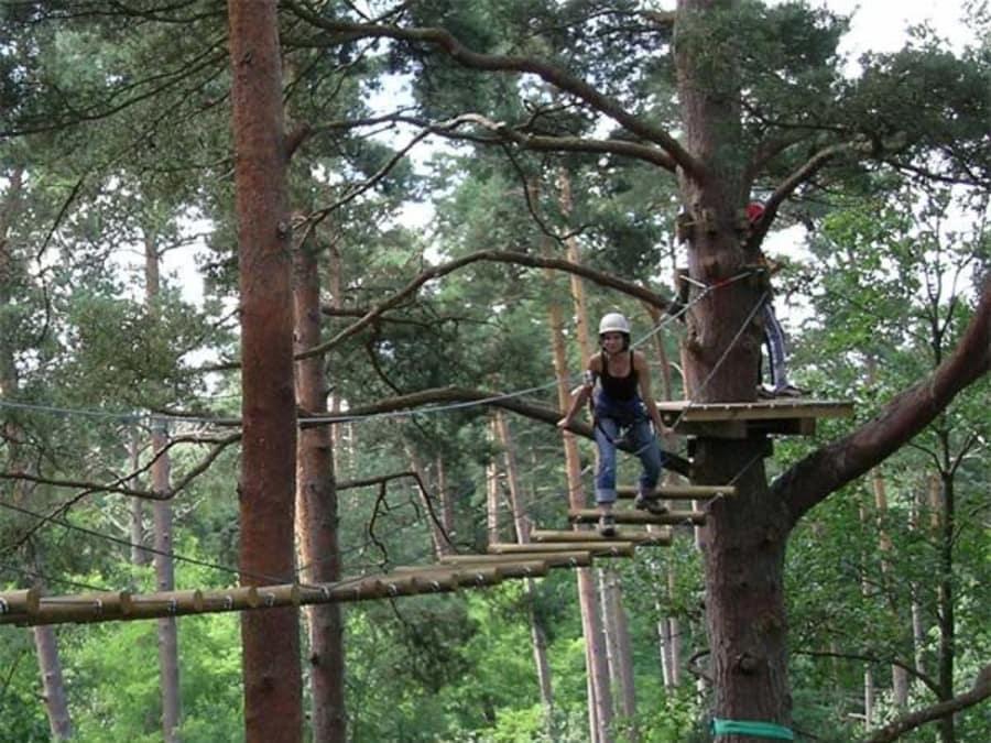 Parc Accrobranche proche Fontainebleau à Milly-la-Forêt (91)