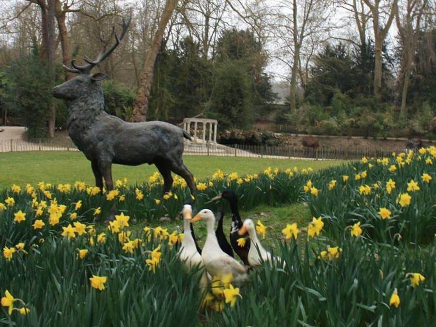 Chasse aux oeufs de Pâques au Potager des Princes à Chantilly