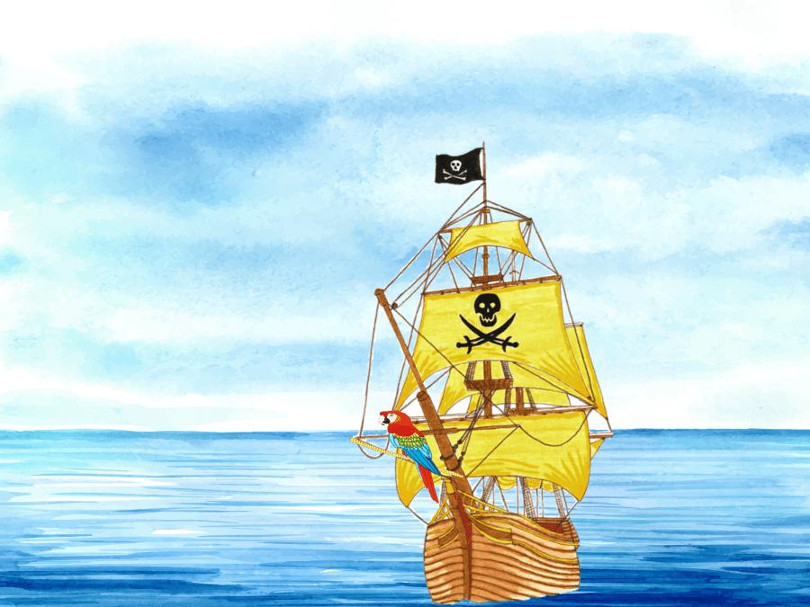 Anniversaire Pirates 4-12 ans à domicile (33)