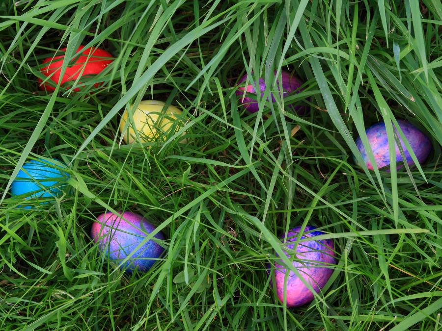 Chasse aux œufs de Pâques à l'accrobranche Ecopark de Montéclin