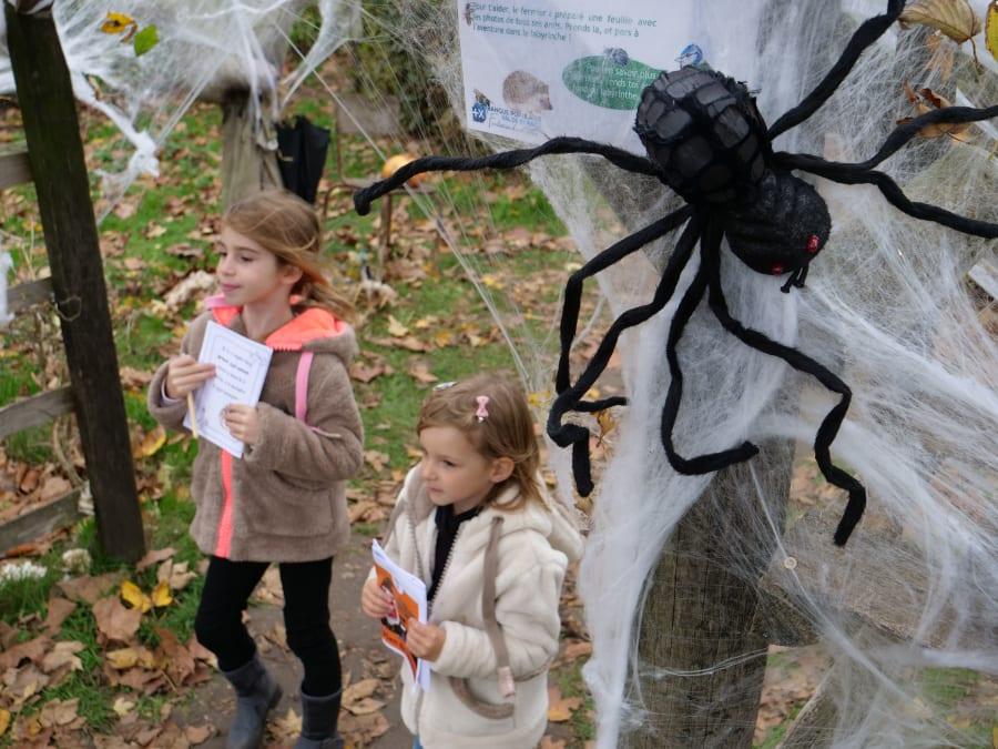 Halloween : c'est pas que sorcier à la Bergerie Nationale !