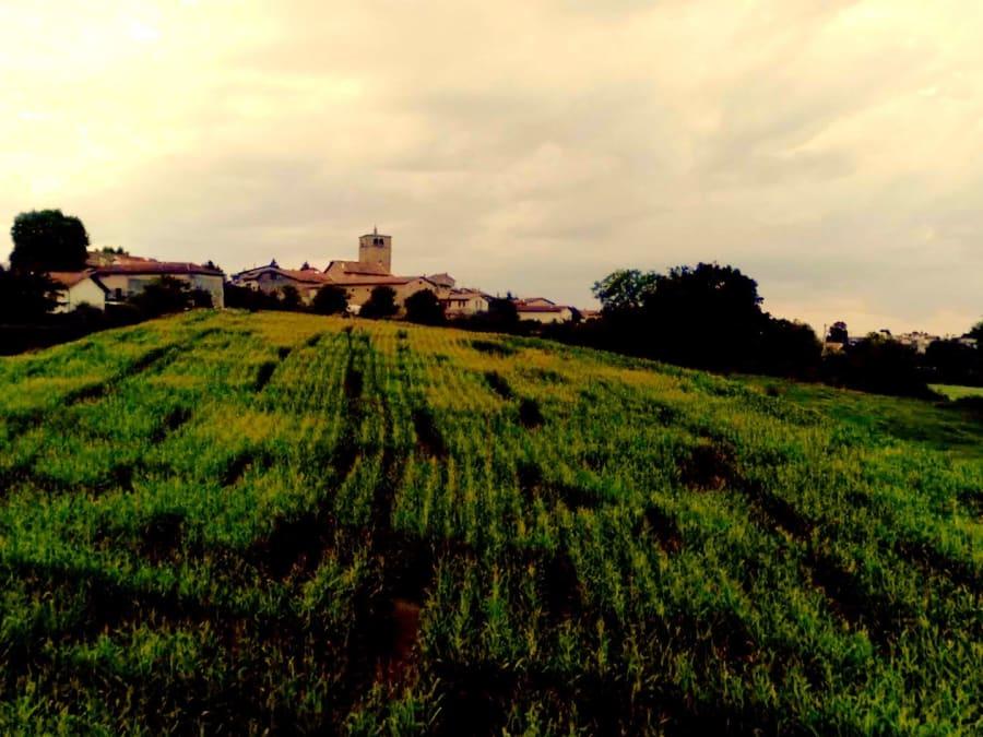 Anniversaire Labyrinthe de Maïs Labyland proche de Lyon