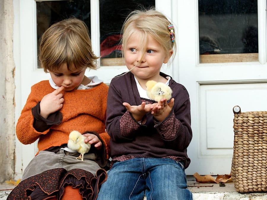 Visite des animaux de la Ferme de Gally (Sartrouville)