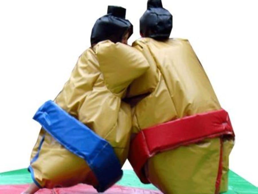 Combat de sumo au parc In Forest proche de Dijon (21)