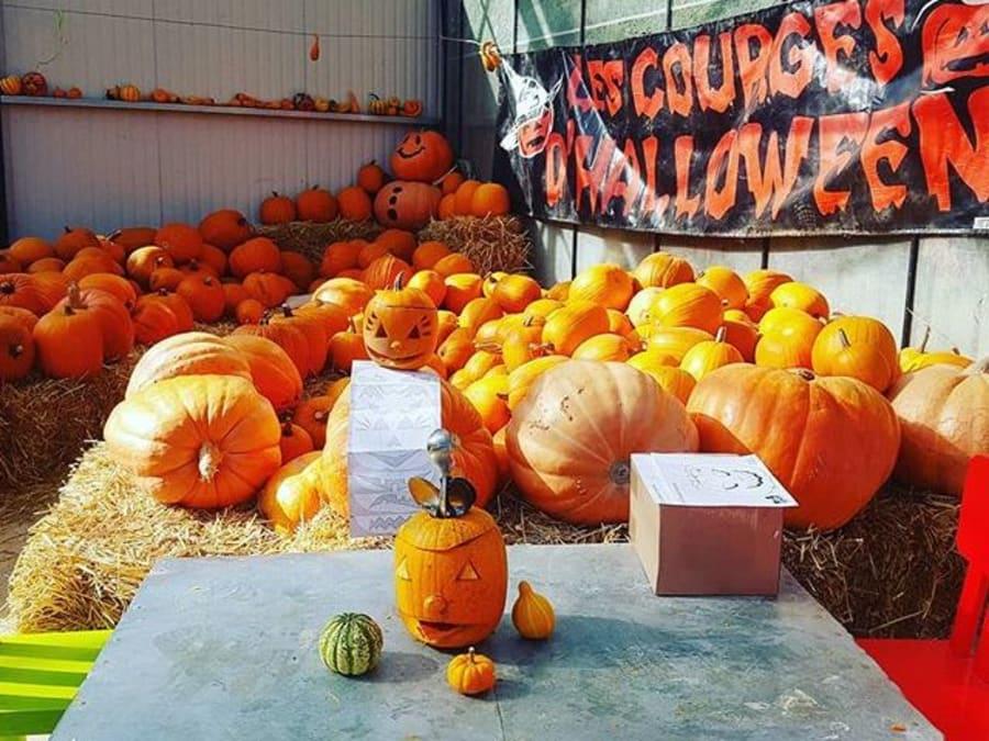 Atelier citrouille Halloween à la cueillette de la Grange (77)