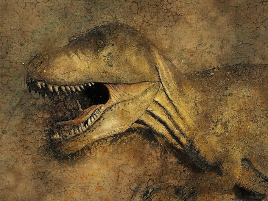 Anniversaire Dinosaures 3-12 ans à domicile