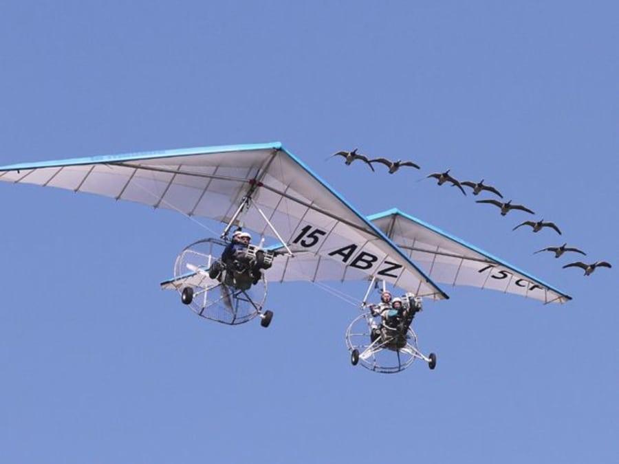 Vol avec les oiseaux en ULM !