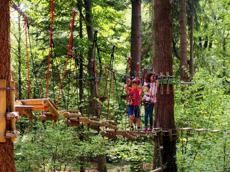 Accrobranche au Parc Aventure du Bois aux Daims (44)