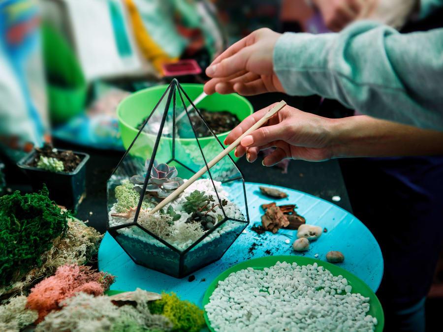 Atelier Terrarium à Paris : créez un petit monde sous verre!