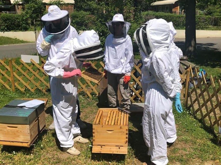 Stage en apiculture d'une journée sur Paris (75016)