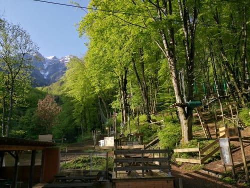 Leman Forest