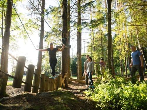 Atout Branches – Milly-la-forêt
