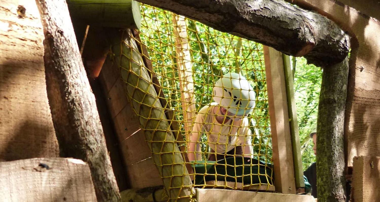 La forêt des verti'tiges - Pau