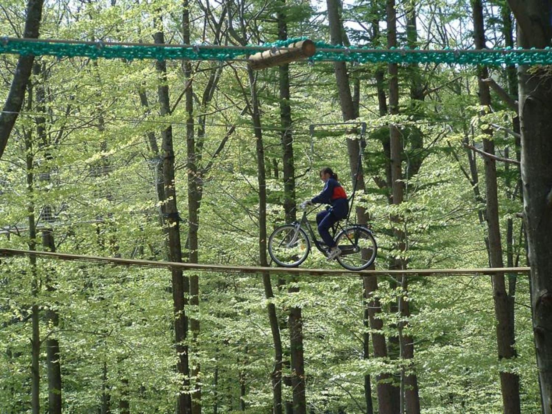 Aventure Parc Aramits - Aramits
