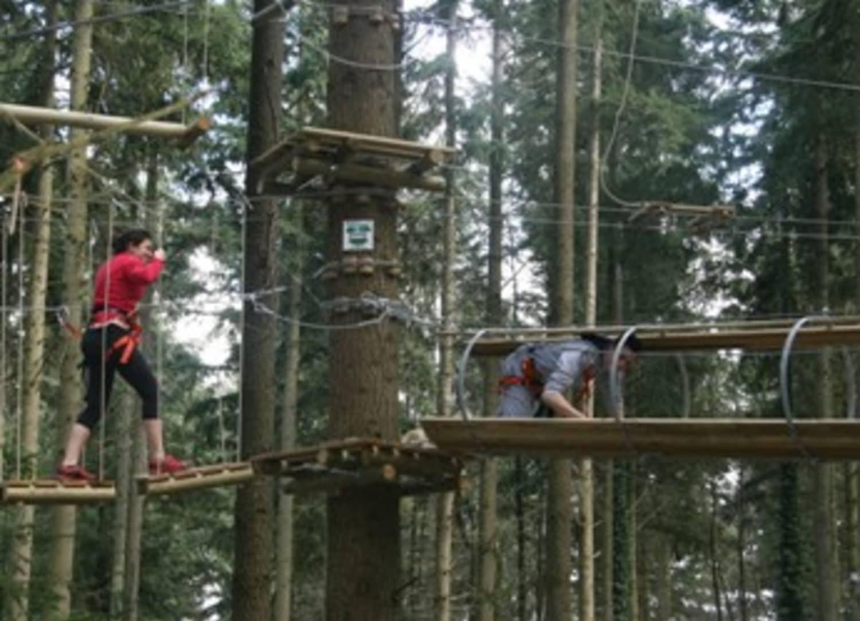 Acroforest - La Haye-Malherbe