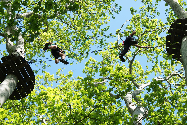 Ecopark Adventures Castille - La Crau