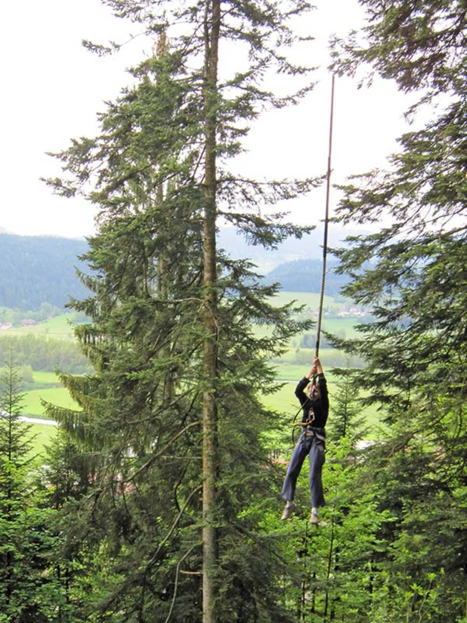 La forêt de l'aventure - Morteau
