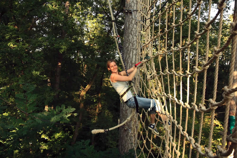Sequoia Vertigo - Carla-Bayle