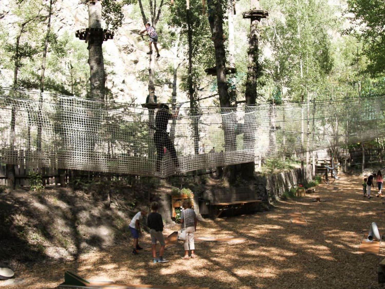 Grimp In Forest - Briançon