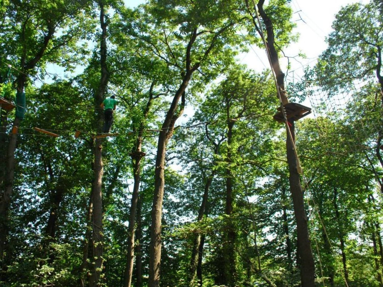Ecopark Adventures Moulin de Sannois - Sannois
