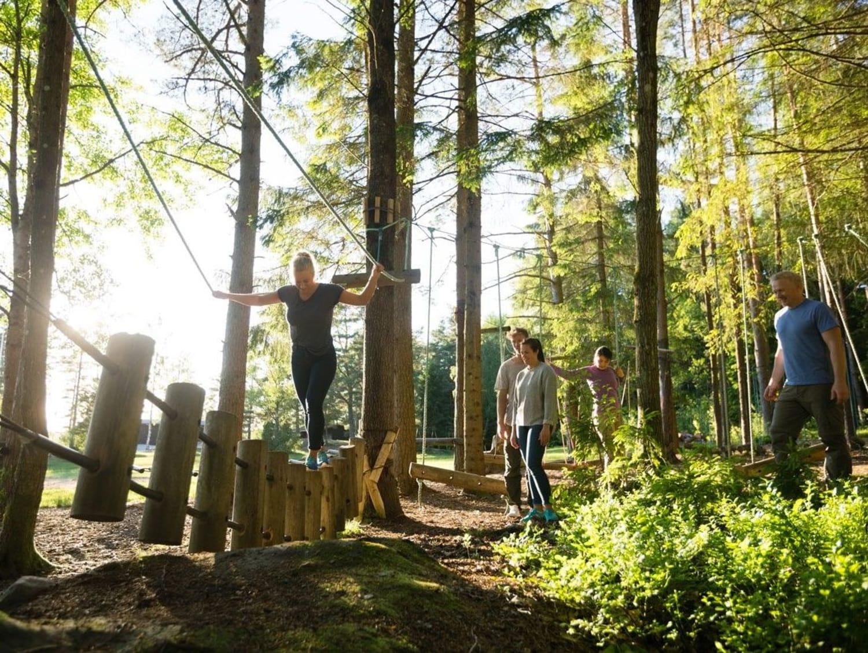 Atout Branches – Milly-la-forêt - Milly-la-Forêt