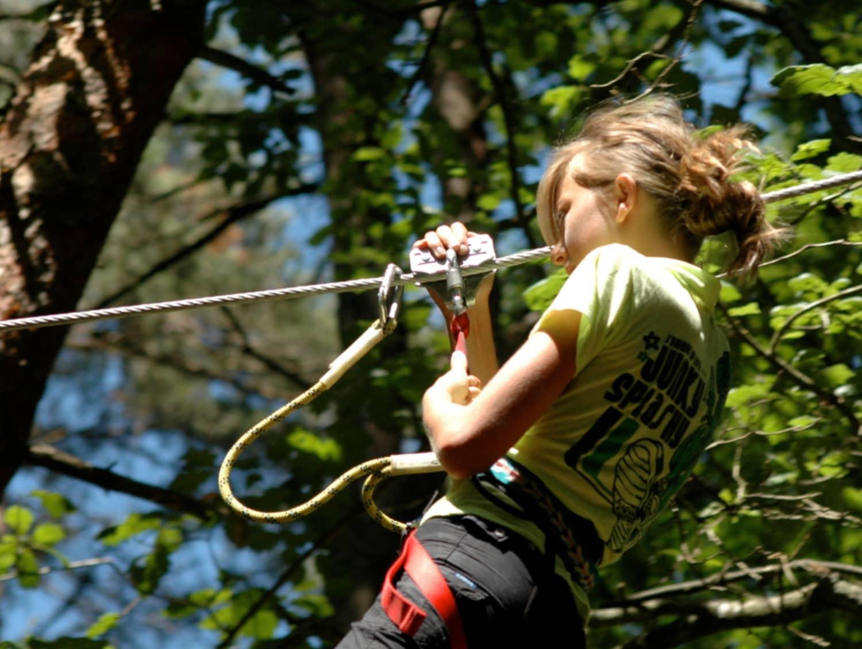 Les Tyroliennes de la Forêt - Sillé-le-Guillaume