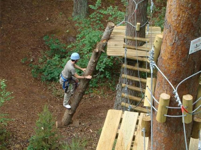Atout Branches - Milly-la-forêt - Milly-la-Forêt