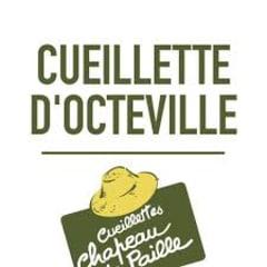 Cueillette d'Octeville