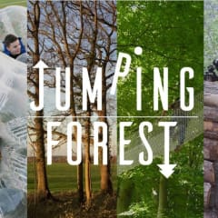 Jumping Forest