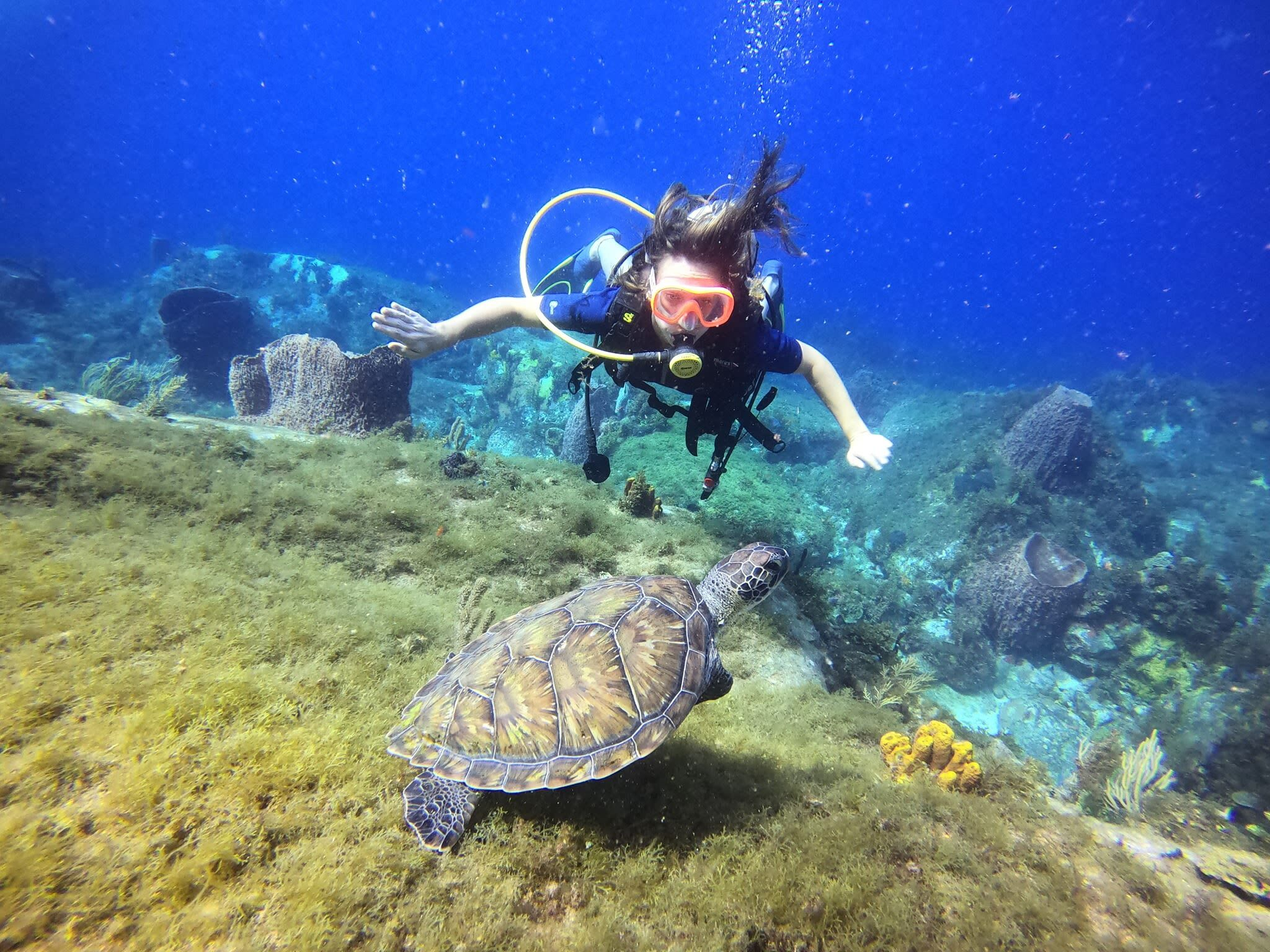 femme plongée sous marine
