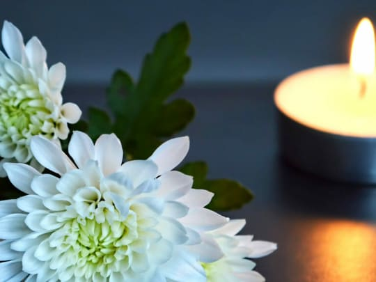 cremation cost information