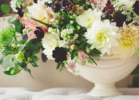 All You Need to Know About Cremation Costs and Services