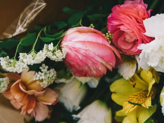 A close-up image of various flowers representing the funeral comparison options of the website Funeralocity
